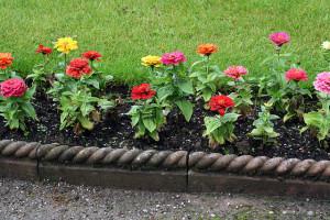 A kertészet remek elfoglaltság